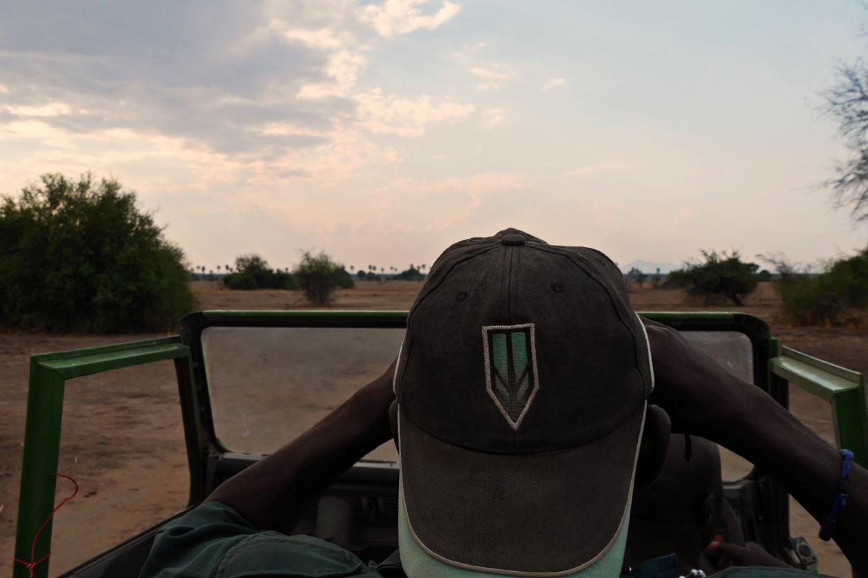 Auf Safari im Liwonde Nationalpark