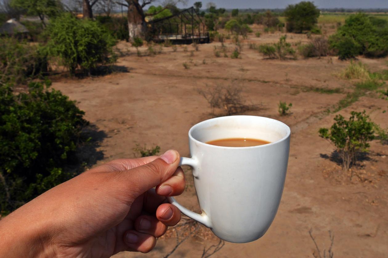 Kaffee mit Aussicht im Bushmans Baobab Camp im Liwonde Nationalpark