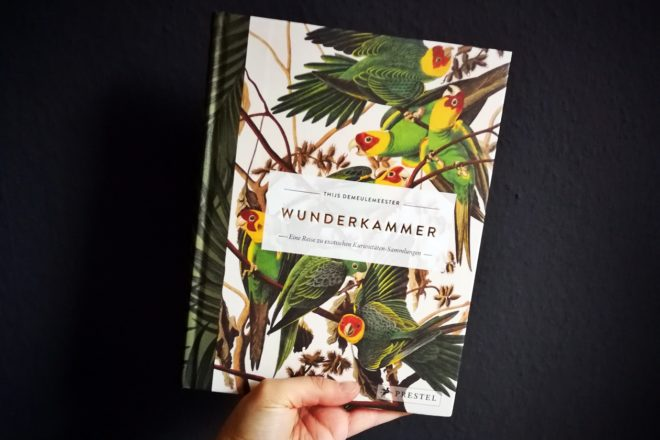 Cover des Buches Wunderkammer aus dem Prestel Verlag