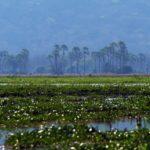 Reiseplanung für Malawi – das solltest du wissen