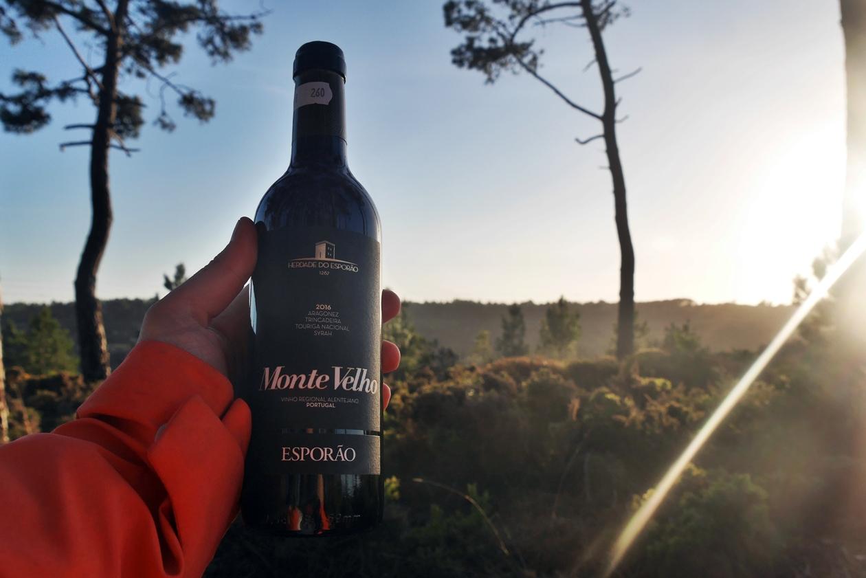 Portugiesischer Wein zum Abendessen