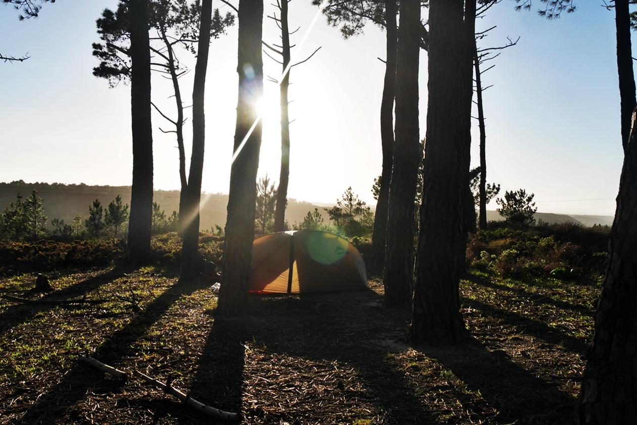 Zelt in einem kleinen Waldstück am Historical Way in Portugal