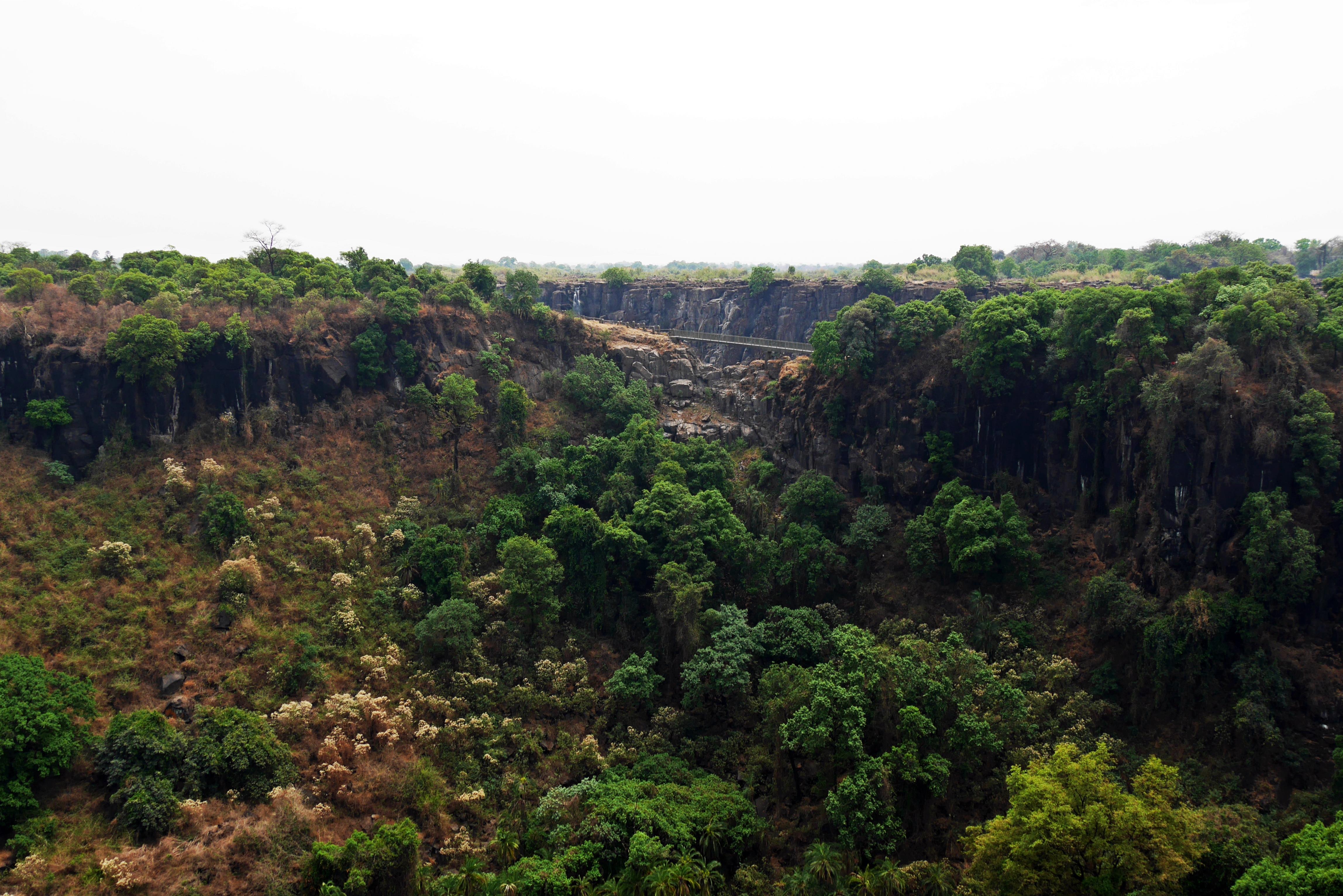 Regenwald der Victoria Fälle