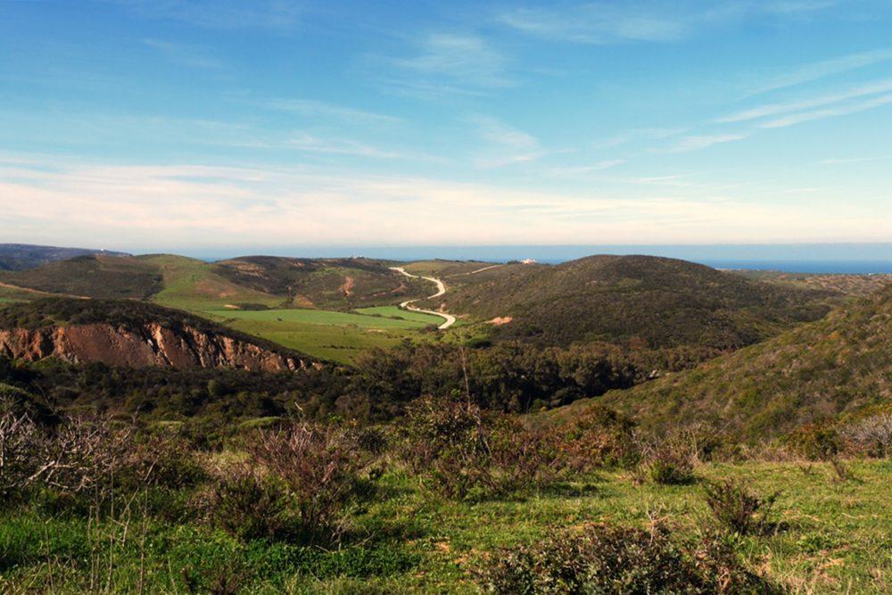 Blick auf die Küste vonPortugal auf dem Historical Way