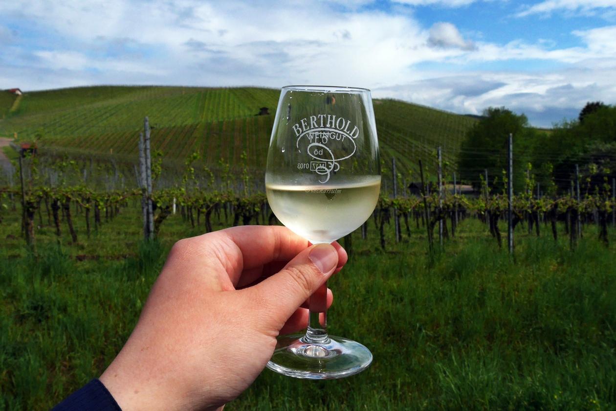 Glas Wein gehalten von einer Hand in den Weinbergen um Neckarsulm