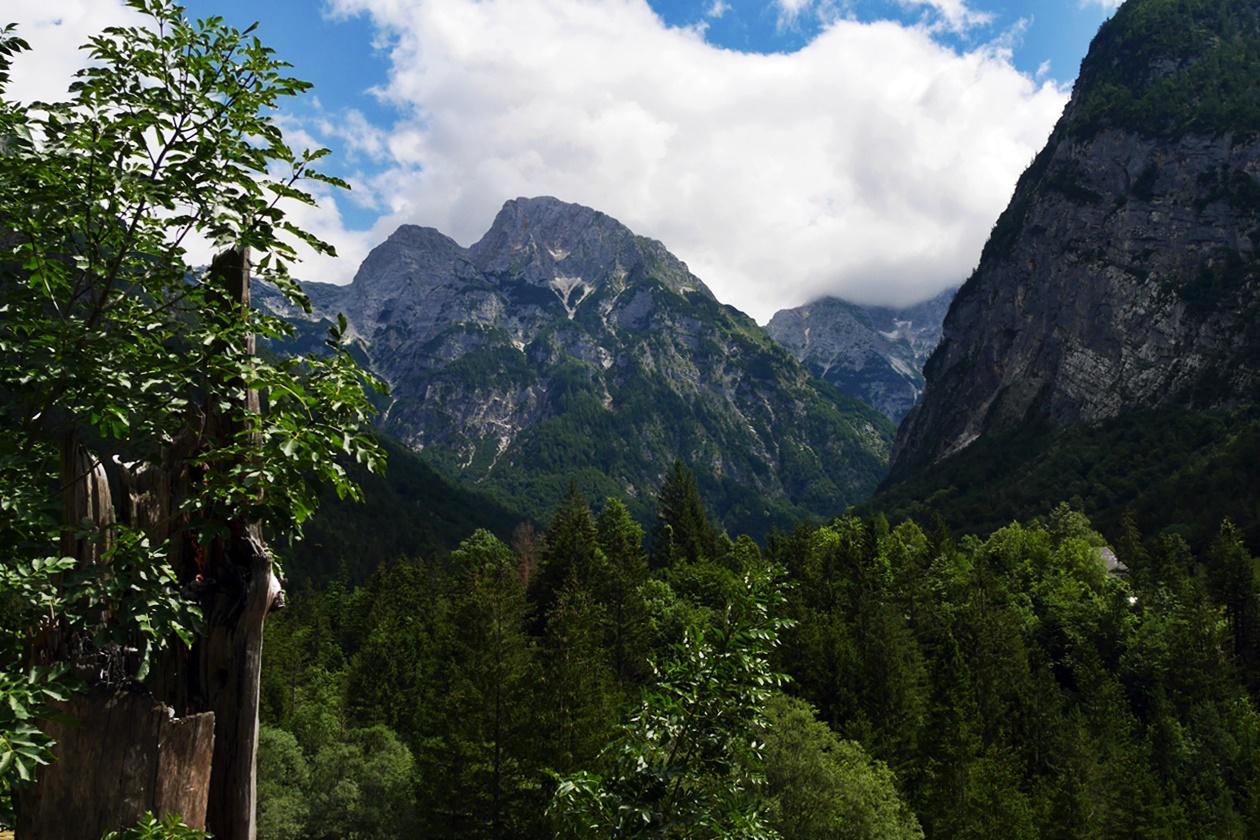 Alpen Panorama auf dem Soca Trail in Slowenien