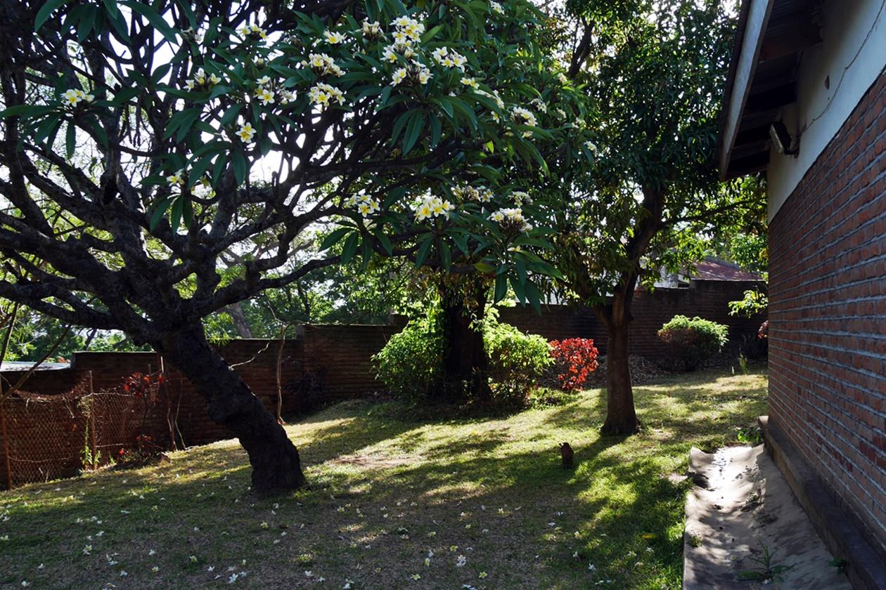 Garten der AirBnB Unterkunft in Blantyre