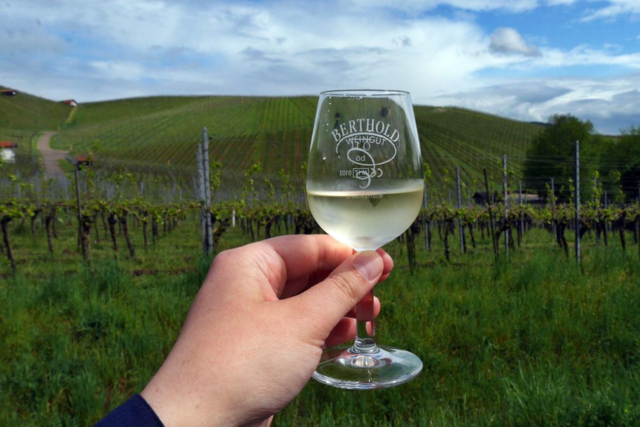 Erhobenes Weinglas vor einem Weinberg in Neckarsulm