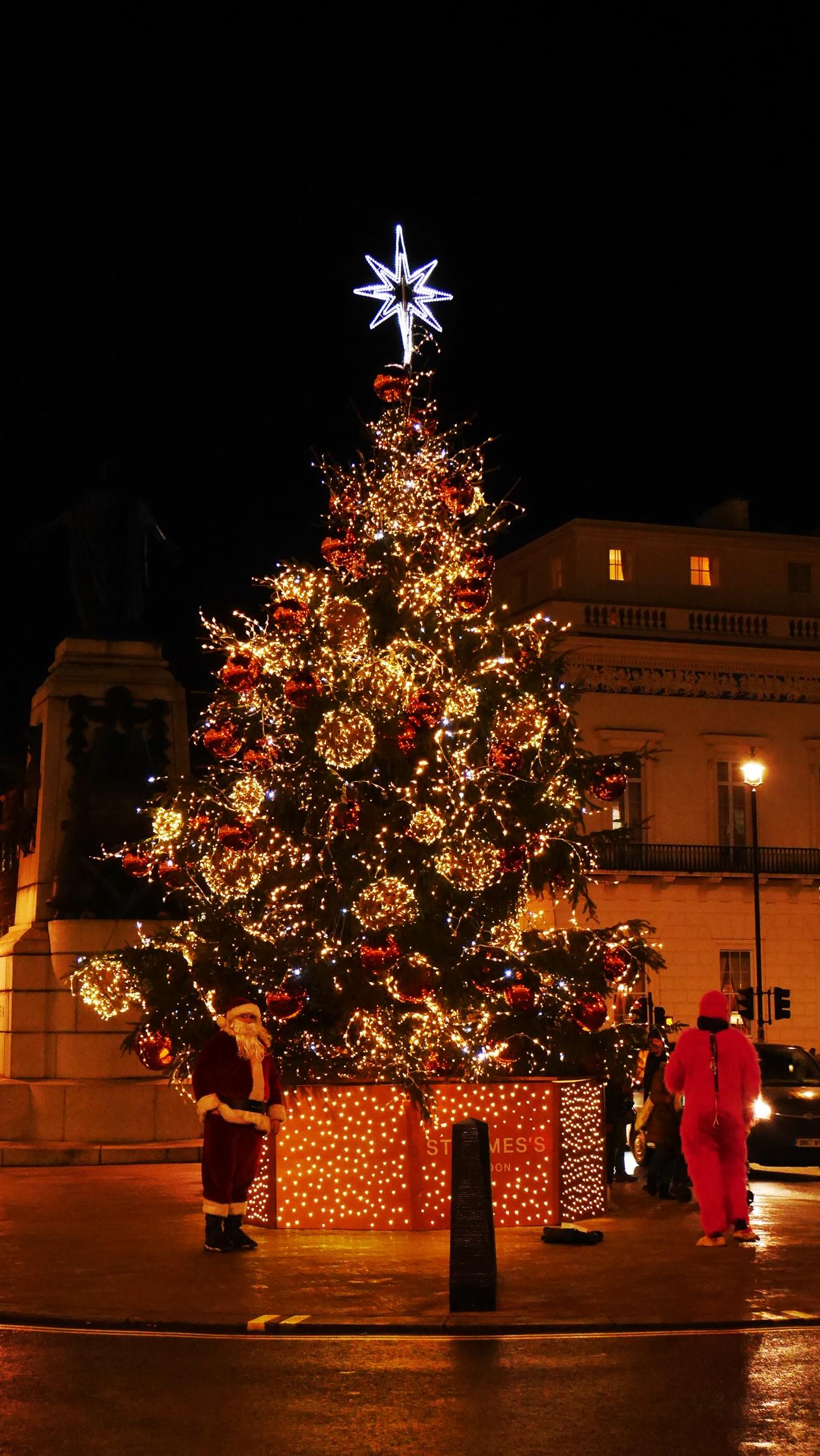 Der wohl schönste Weihnachtsbaum Londons steht am Piccadilly Circus