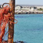 Südafrikas Westküste: Ein Roadtrip zu unberührten Orten