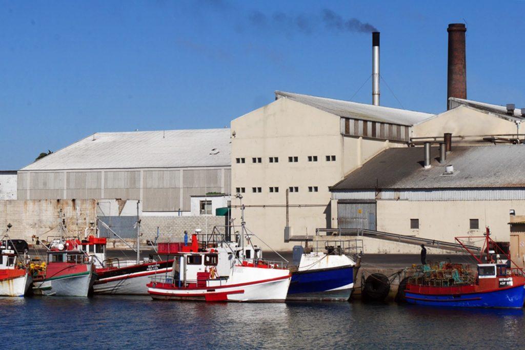 Kartoffelfabrik und Fischerboote im Hafen von Lamberts Bay