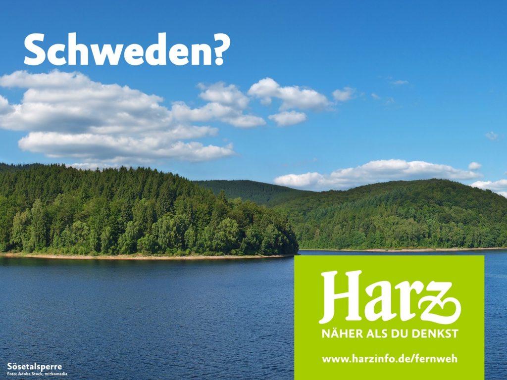 Die Fichtenwälder und Seen wecken das Fernweh Harz