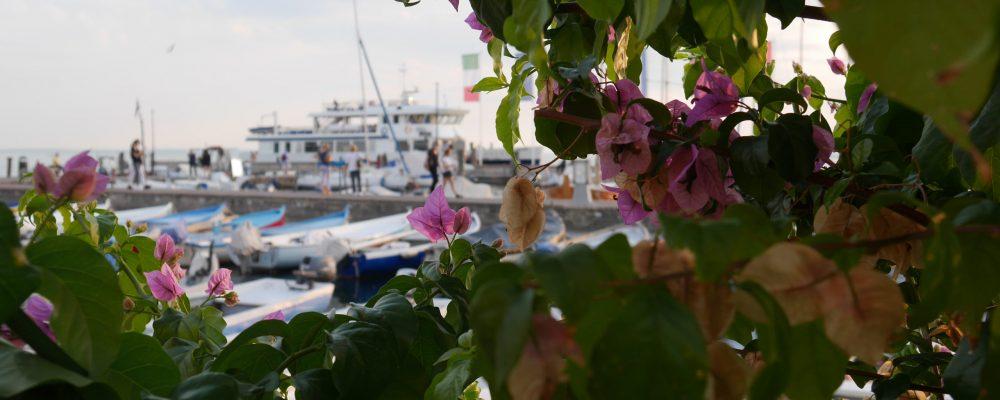 Fischerboote im Hafen von Bardolino am Gardasee