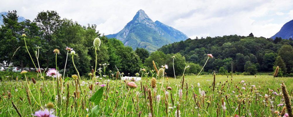 Blick auf den Svinjak, der Hausberg von Slowenien